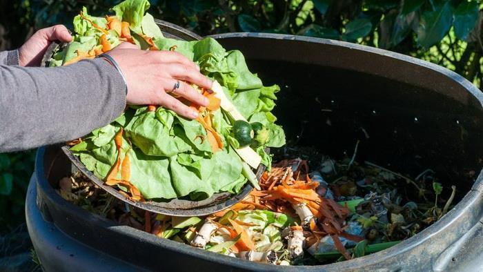 تزریق سمبه بدن با خوردن غذای مانده